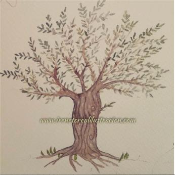 watercolor_olivo-01